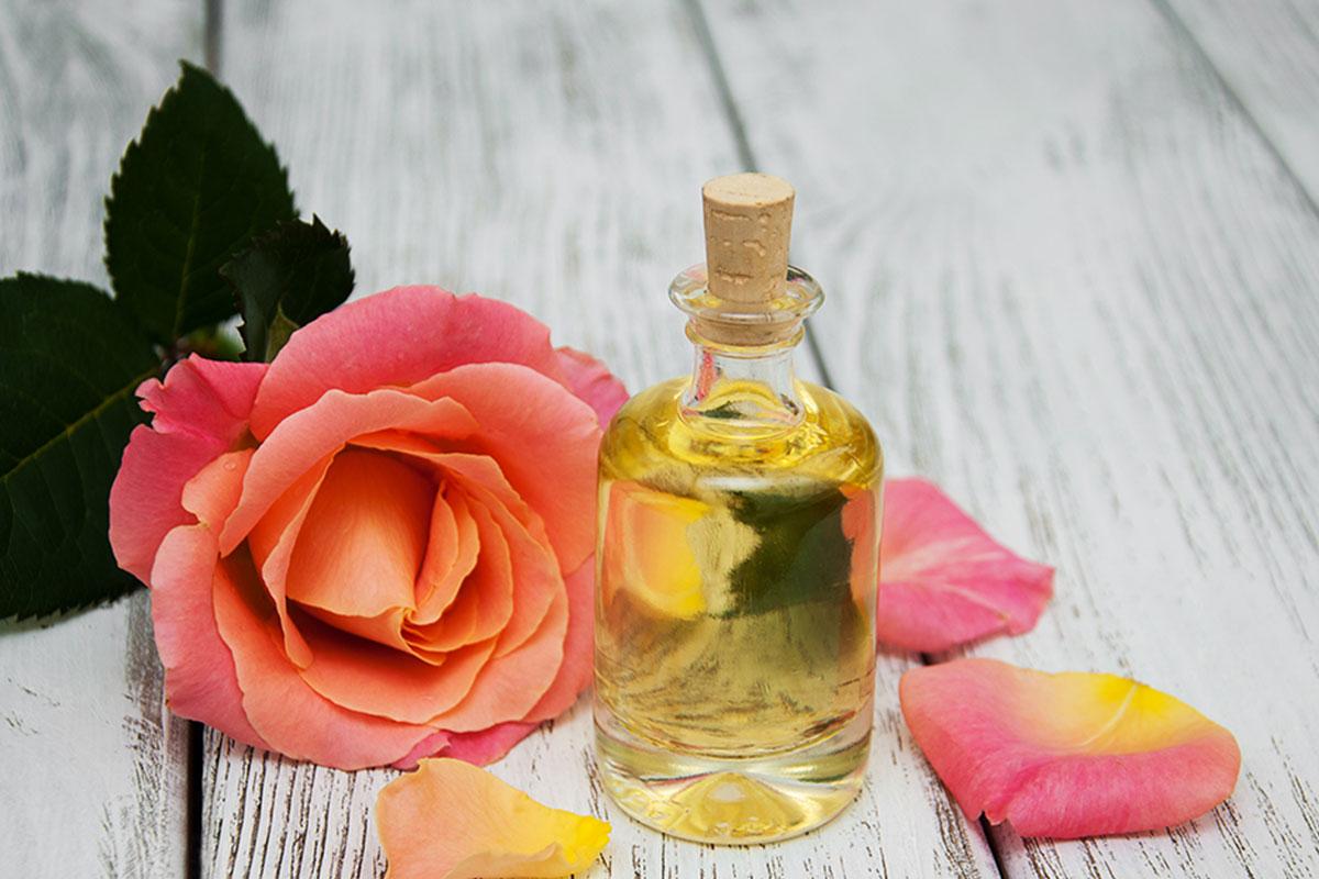 La rose : Un ingrédient naturel et bio de la formule a12