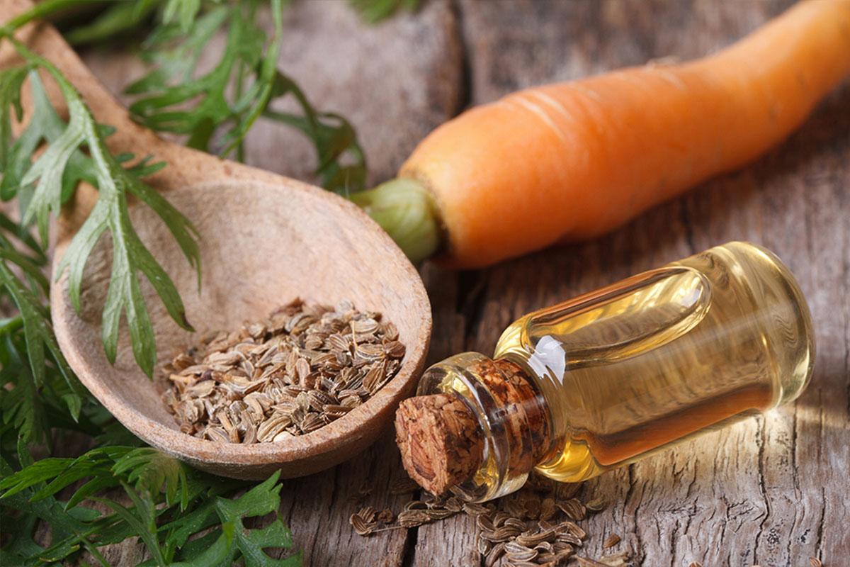 La carotte : Un ingrédient naturel et bio de la formule a12